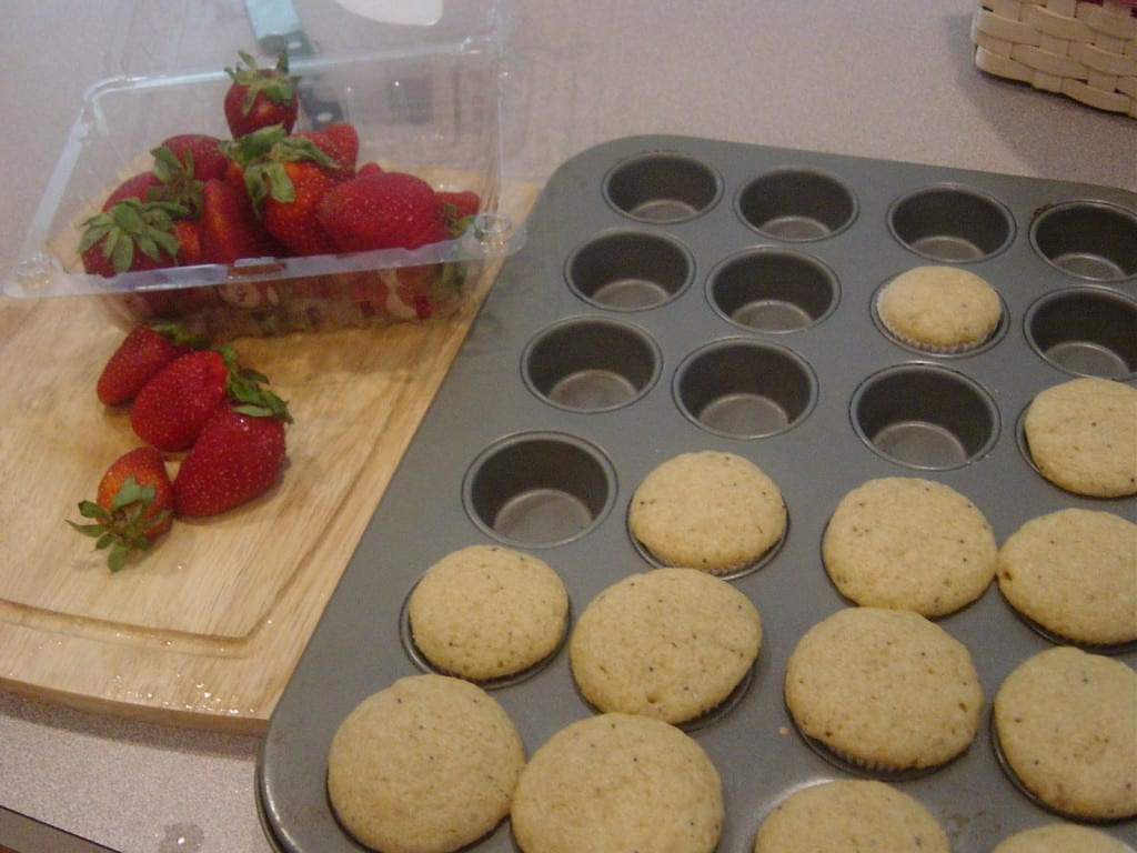Whole Wheat Lemon Poppy Seed Muffins at The Happy Housewife