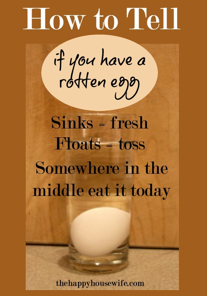 How to Tell if You Have a Rotten Egg - The Happy Housewife™ :: Cooking