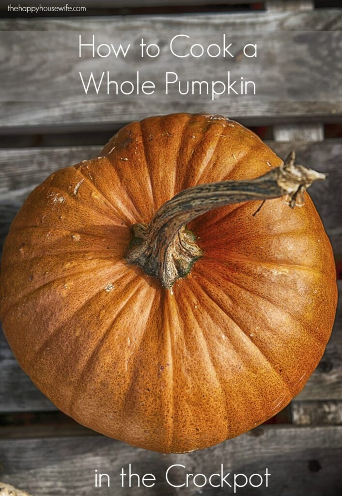 It is easy to cook a fresh pumpkin and it tastes so much better than the canned pumpkin you buy at the grocery store. I usually cook mine in the crock pot and then freeze the extra for later.