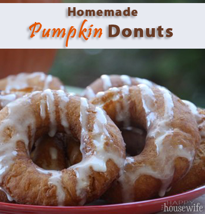 Homemade Pumpkin Donuts at The Happy Housewife