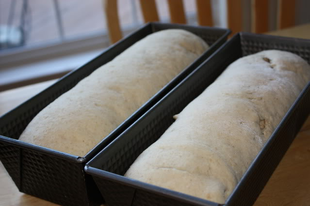 Maple Oat Bread With Cinnamon Swirl The Happy Housewife