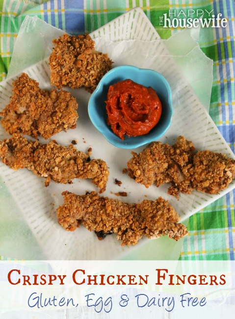 Crispy Chicken Fingers - Gluten, Egg & Dairy Free at The Happy Housewife