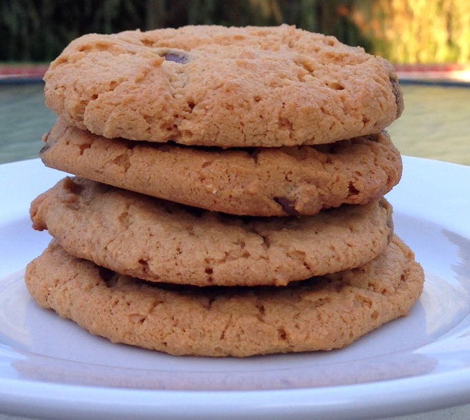 gluten free chocolate chip cashew cookies