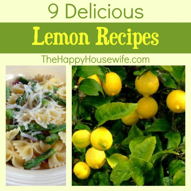 9 Delicious Lemon Recipes at The Happy Housewife