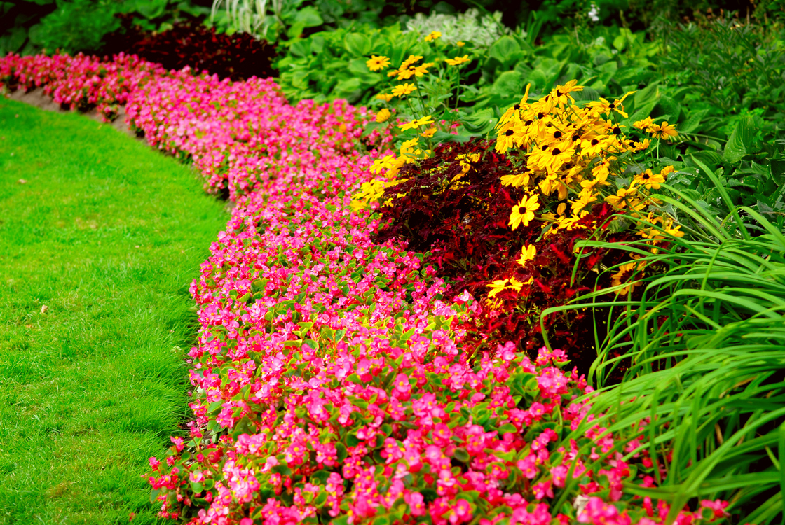Saving money on home landscaping projects the happy for Flower designs for yards