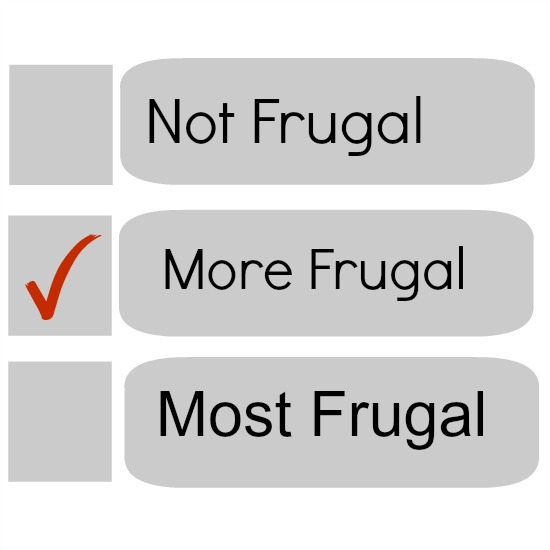 Choosing Not Frugal, More Frugal, or Most Frugal | The Happy Housewife