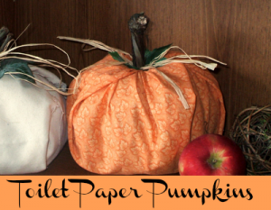Toilet Paper Pumpkins at The Happy Housewife