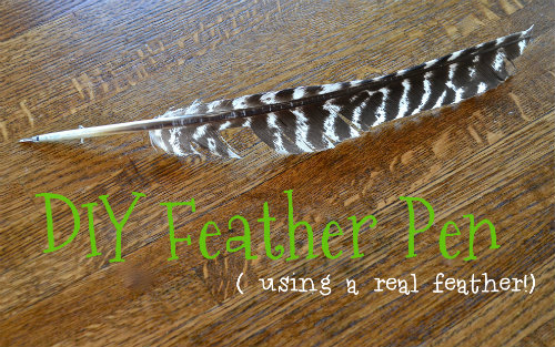 how to make a feather pen the happy housewife home management. Black Bedroom Furniture Sets. Home Design Ideas