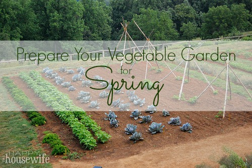 Prepare Your Vegetable Garden for Spring | The Happy Housewife