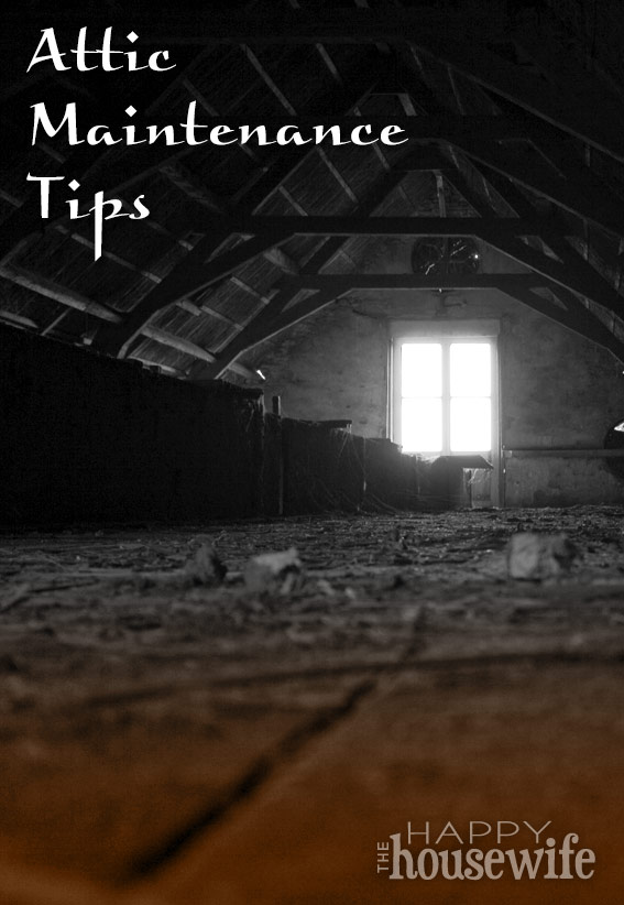 Attic Maintenance Tips | The Happy Housewife