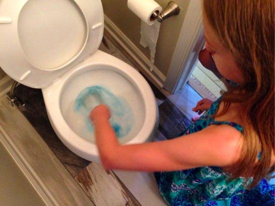 toilet cleaner-1