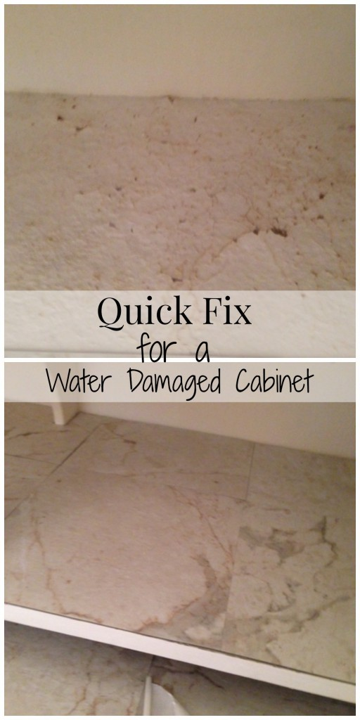 Day 43 Renovation Adventures Bathroom Cabinet Update The Happy Housewife Home Management
