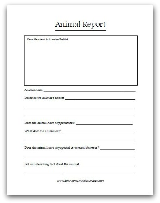 Animal Science how to write a research report example
