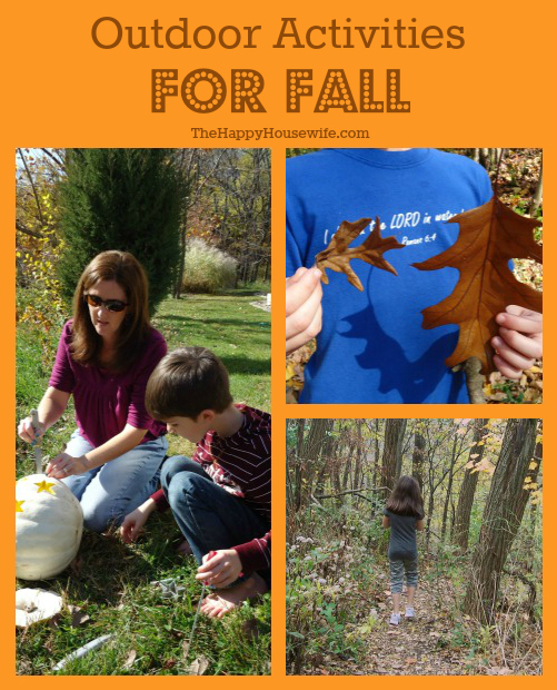 Outdoor Activities for Fall | The Happy Housewife