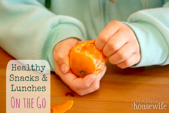 Healthy Snacks and Lunches On the Go   The Happy Housewife