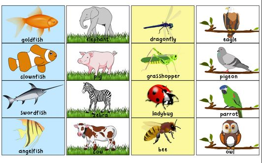 Animal Sorting Activity at Free Printable Friday | The Happy Housewife