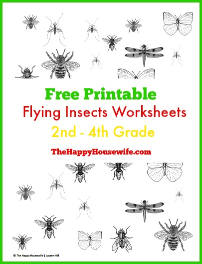Printables Free Insect Worksheets flying insects worksheets free printables the happy housewife housewife