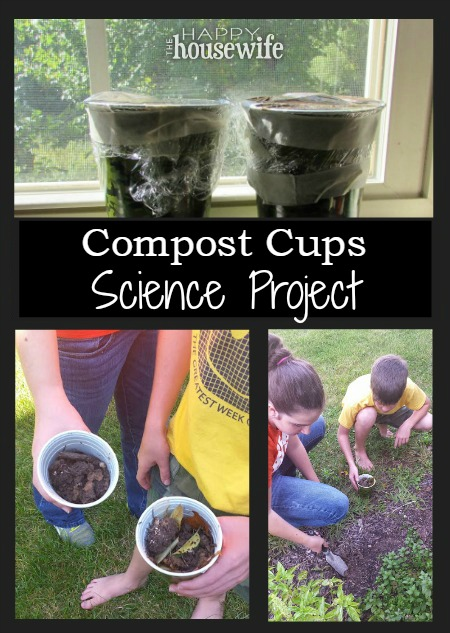 Compost Cups Science Project at The Happy Housewife