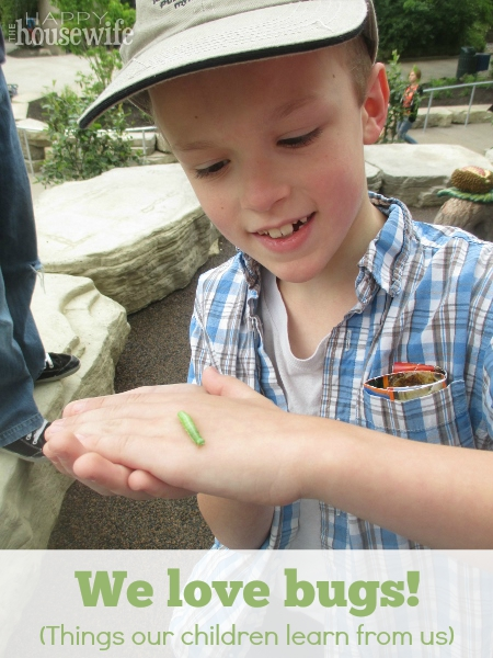 We Love Bugs! (Things Our Children Learn From Us) at The Happy Housewife