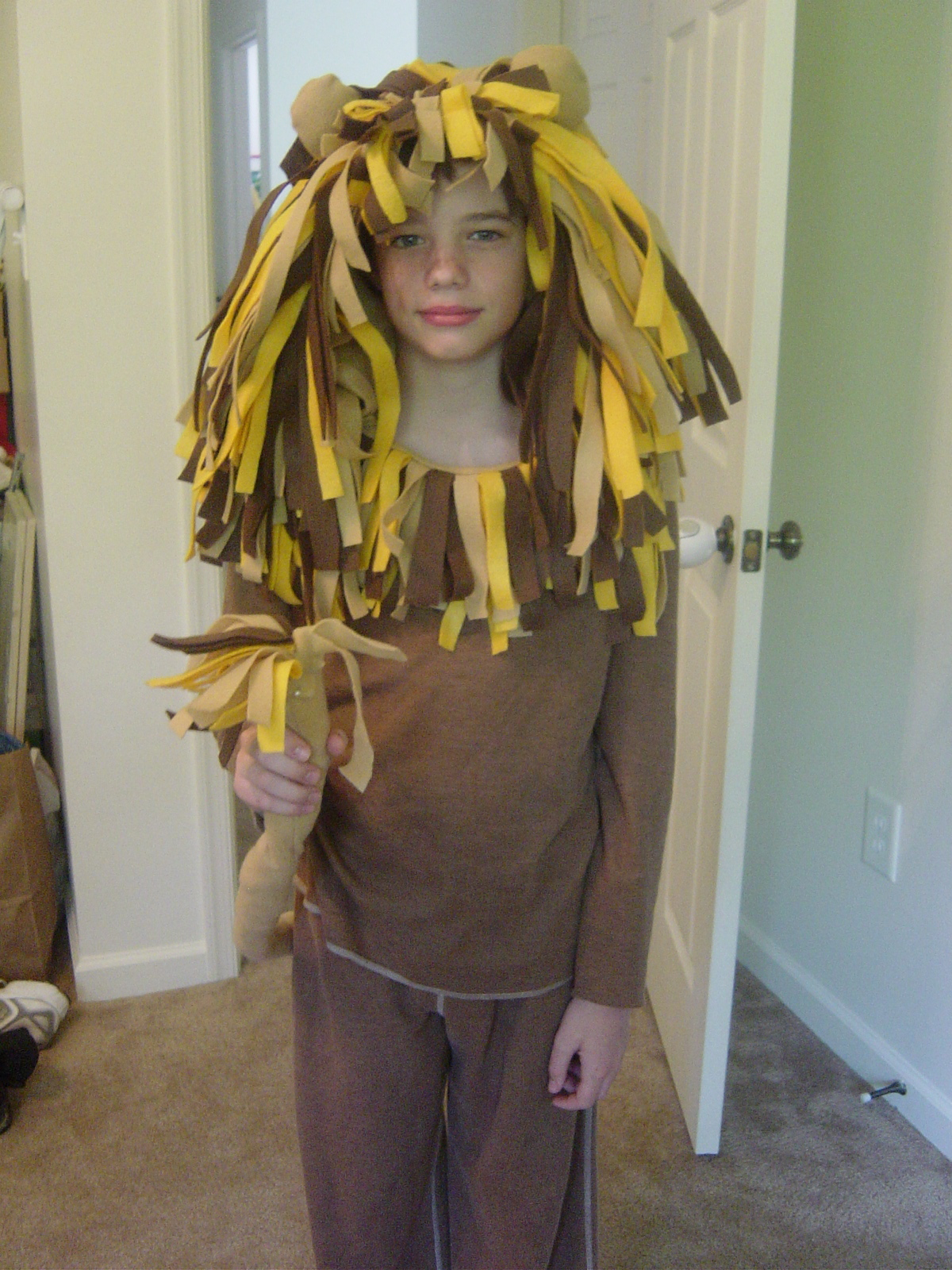 Lion Costume Diy