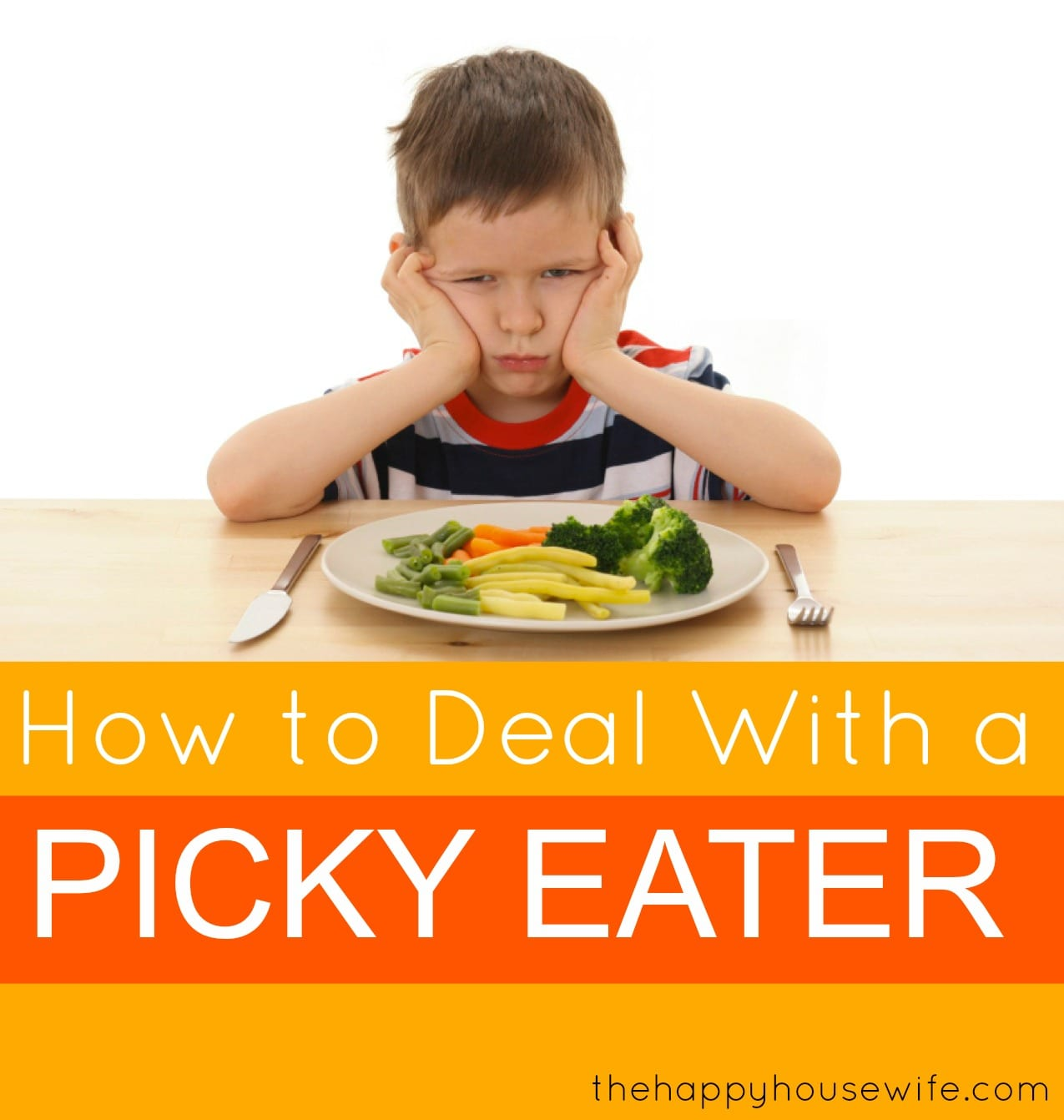 How to Deal with a Picky Eater EBook