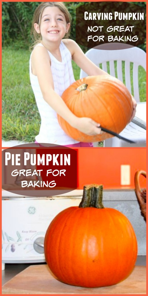 Can you bake your halloween pumpkin? Typically jack-o-latern pumpkins are not suited for eating, but here's how to find one that tastes great!