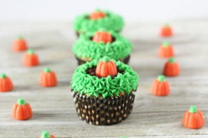 Fall cupcakes with a pumpkin theme. Easy to make!