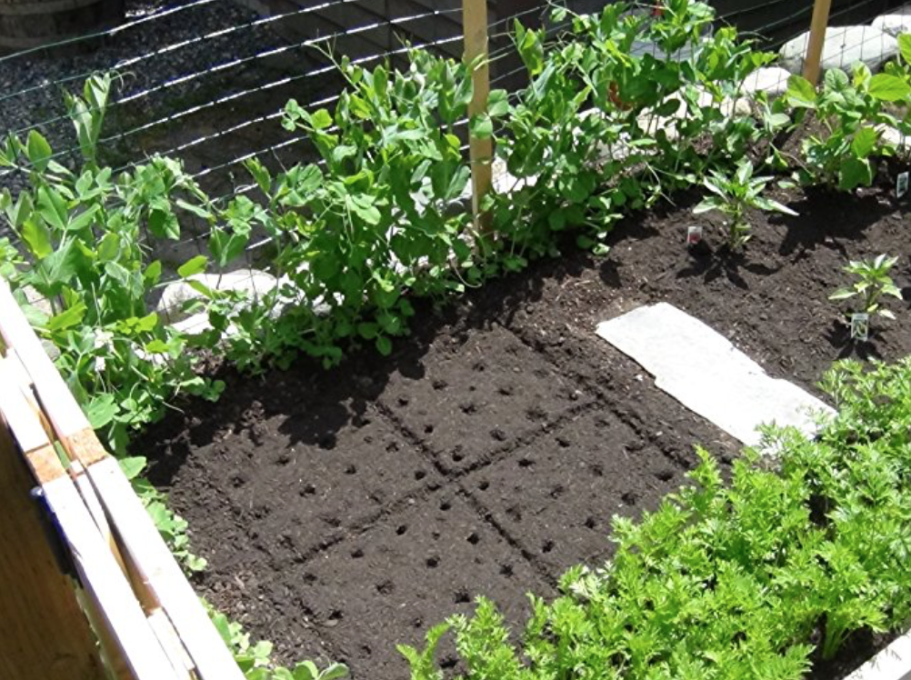 seedling square- gardening template for small space gardening