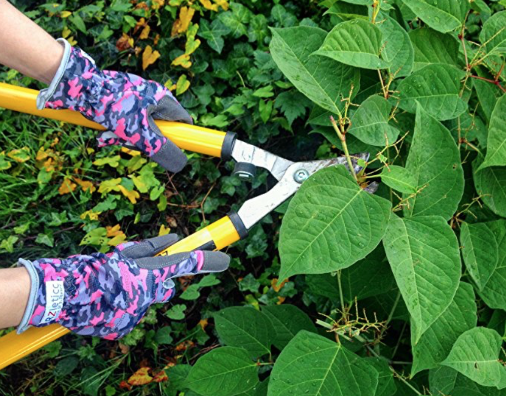 gardening gloves that are breathable and allow you to use your touch screen phone