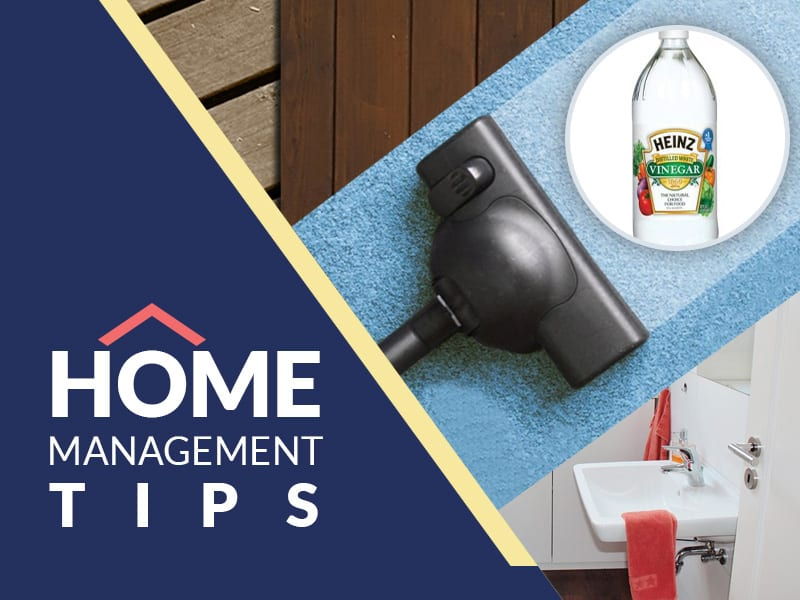 Image result for home management