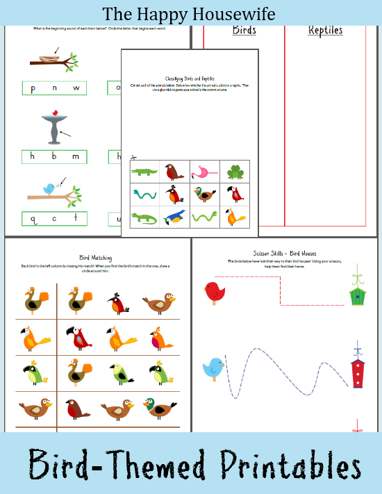 Bird Worksheets Free Printable on Reptile Worksheets Preschool