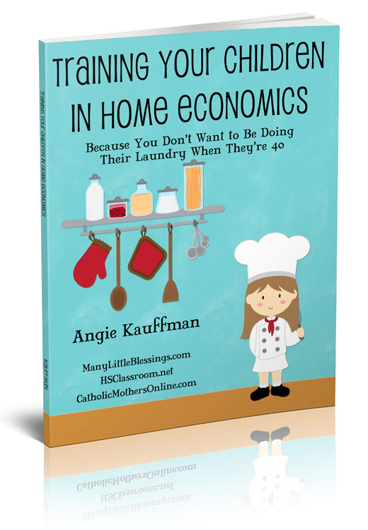 Training Your Children in Home Economics eBook: 40% off Discount ...