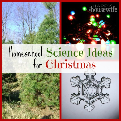Homeschool Science Ideas For Christmas | The Happy Housewife