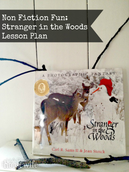 Stranger in the Woods Lesson Plan | The Happy Housewife
