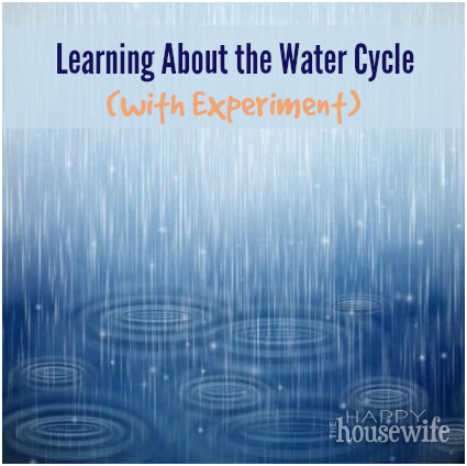 Learning About the Water Cycle (with Experiment) | The Happy Housewife