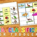 free animal classification printable get science started early with this fun activity