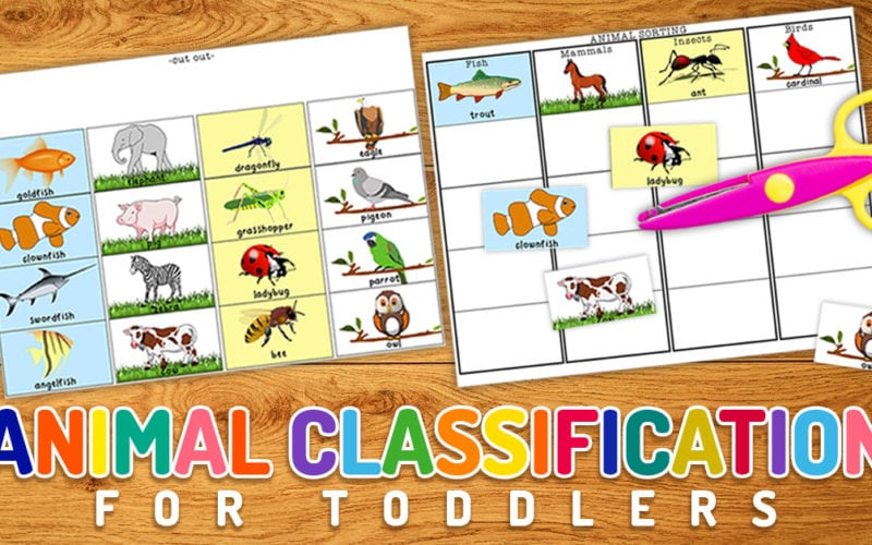 Animal Classification Printable
