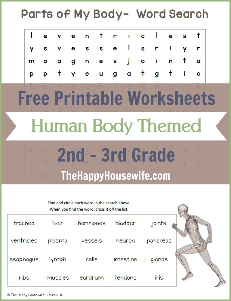 Human Body Themed Worksheets: Free Printables - The Happy Housewife ...
