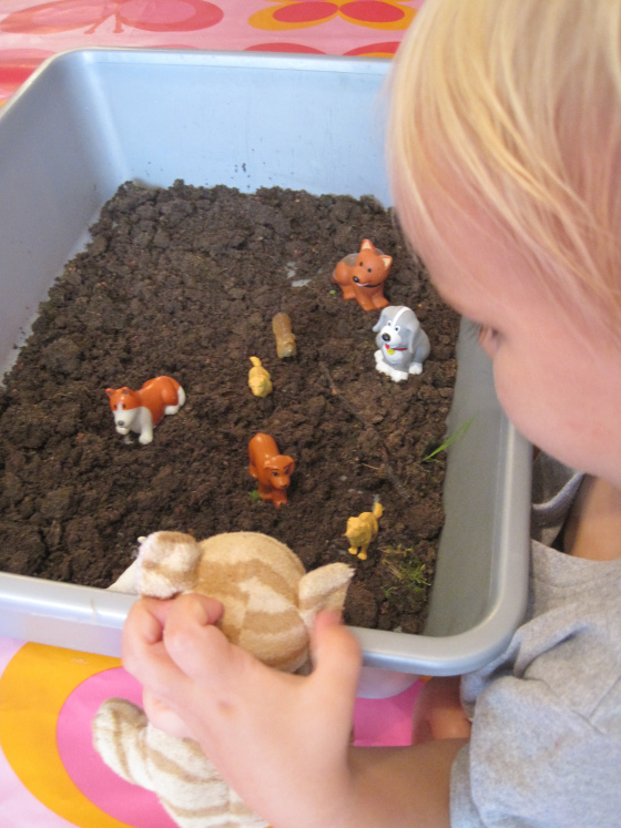 harry the dirty dog sensory bin