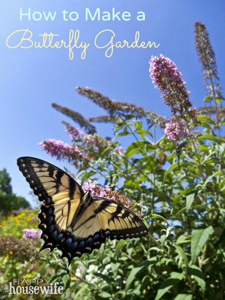 How to Make a Butterfly Garden at The Happy Housewife