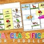 Animal Classification Printable